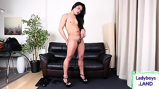 Cute ladyboy whips her wang out